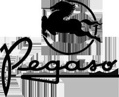 Pegaso (E)