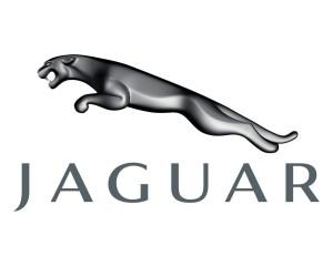 Logotipo de la marca