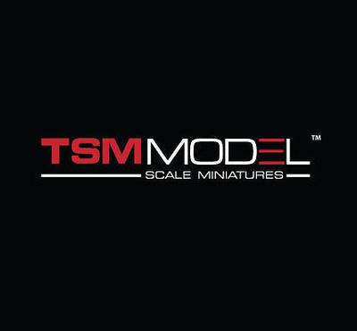TSM Model 1:43